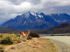 Exploring Torres del Paine National Park by brocks87