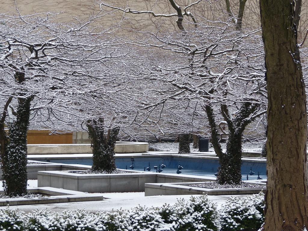 art institute of chicago south garden in winter steve silverman