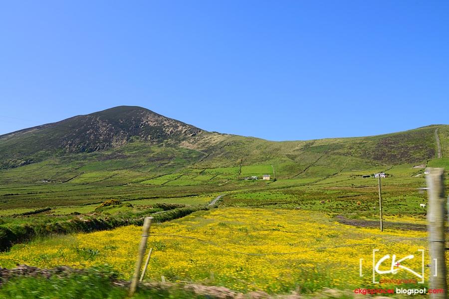 Ireland_075