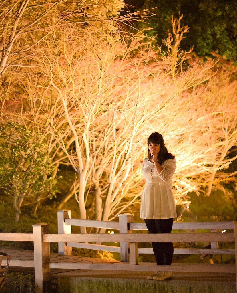 nabano no sato nagoya led light show light tunnel flower botanical garden laila blog tapeparade