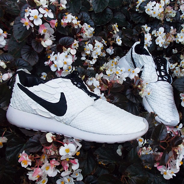 how to clean roshe 2