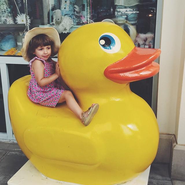 Iris on a duck.