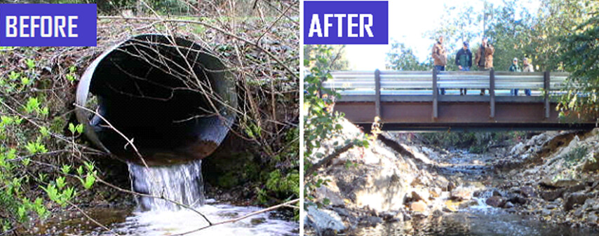 Fish Barrier Culvert Before And After A Fish Barrier
