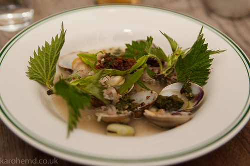 Clams, Cheek, stinging nettles