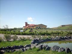 La biodinamica a Serra del Granato