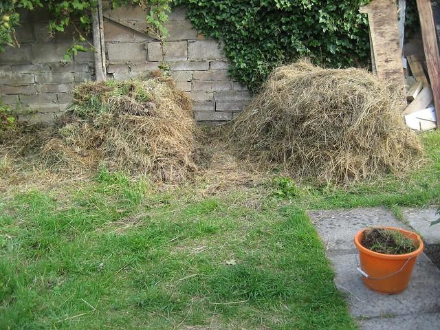 Landscape Gardening Apprenticeships : Photo
