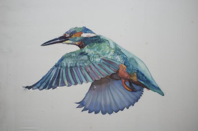 GH Birds 7