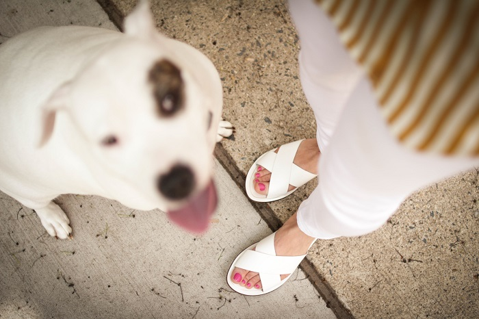 aviza style. a viza style. andrea viza. fashion blogger. dc blogger. spring style. white denim. verticle stripe silk top. white slides sandals. 10