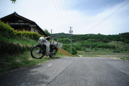 田舎のカブ