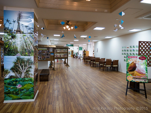 東南植物楽園-2