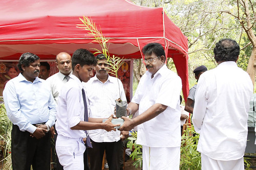 World Environment Day celebrated in Mullaitivu