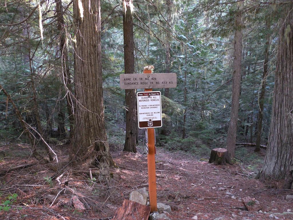 Anne Creek trail 426