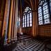 Vert_35299_307_FTM2 / Notre Dame - Paris