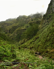 Vista do Caldeirão do Inferno (Santana, Madeira)