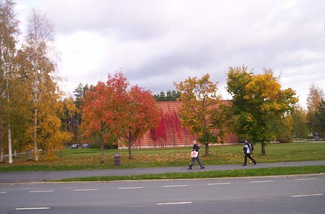 Fotos de Finlandia: el otoño