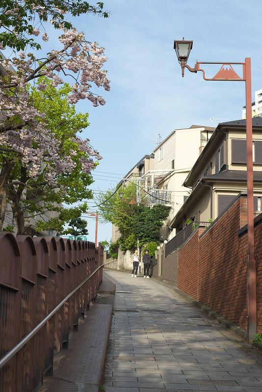 東京路地裏散歩 富士見坂 2015年4月18日