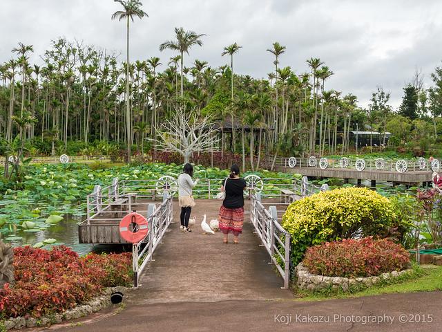 東南植物楽園-137