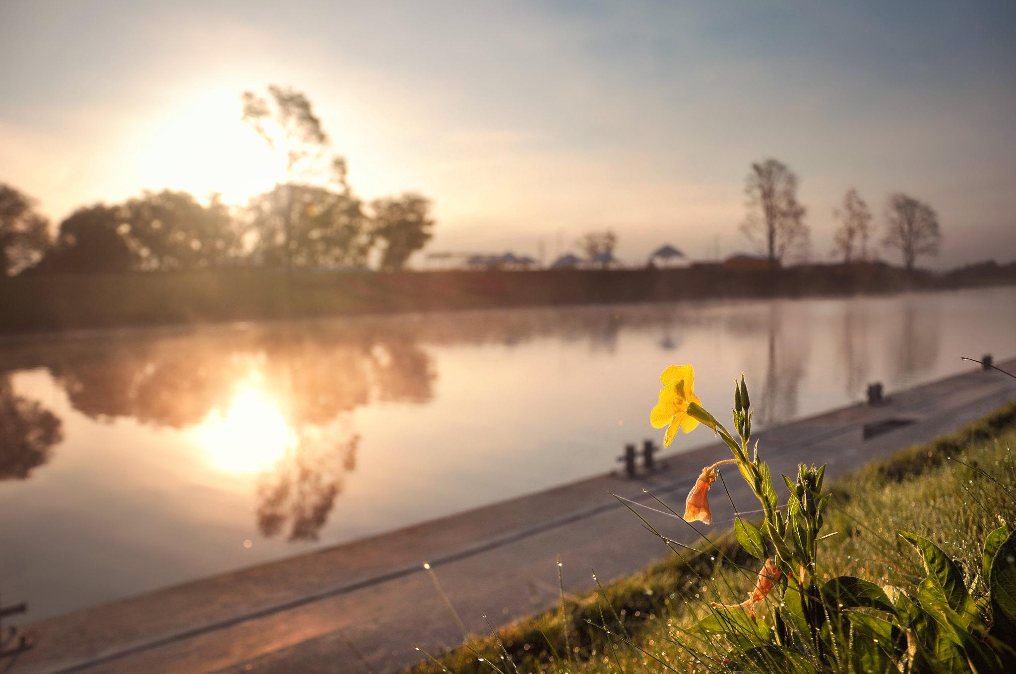 Romantiskais riits pie Driksas upes 2015