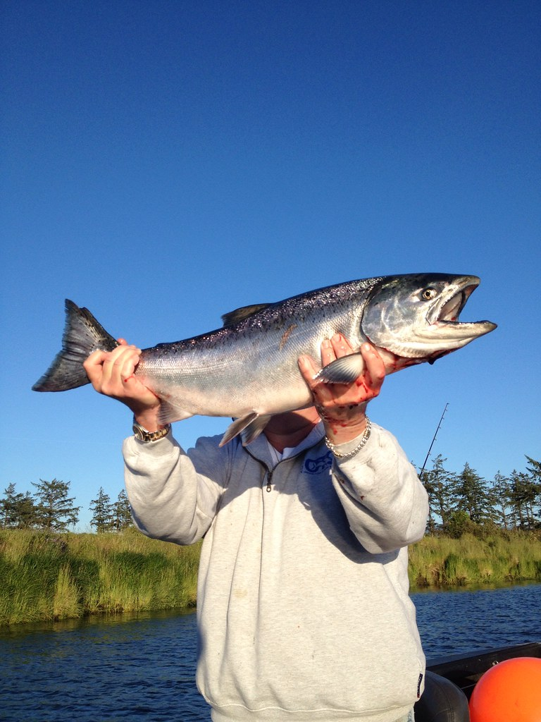 Spring chinook on the trask river for Trask river fishing report