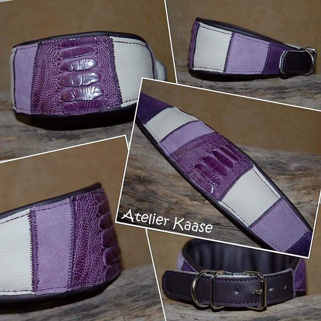 strauß violett