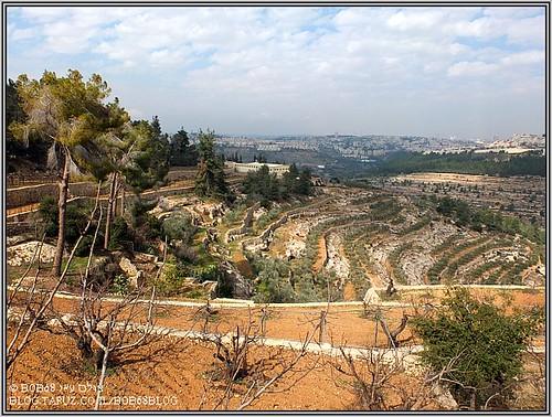 מ- כרמיזן לכיוון ירושלים