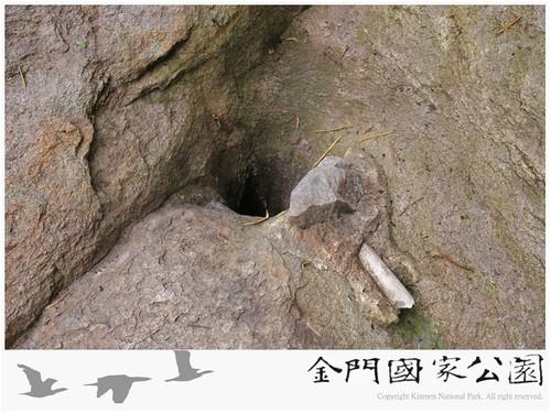古崗仙井泉-02