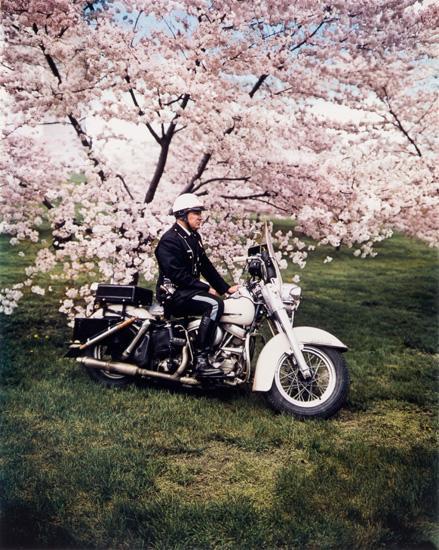 Springtime, Washington, 1965 16 x 20 inch dye transfer print (c) Evelyn Hofer