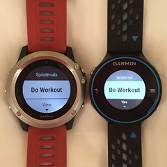 Do Workout Fenix 3 vs Forerunner 620