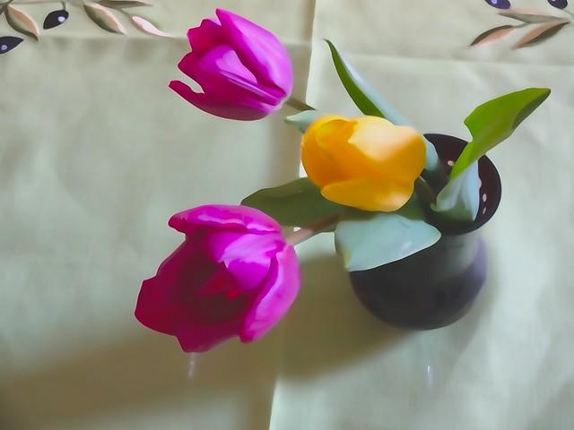 3 tulipàn