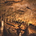 Mammoth Cave Detail