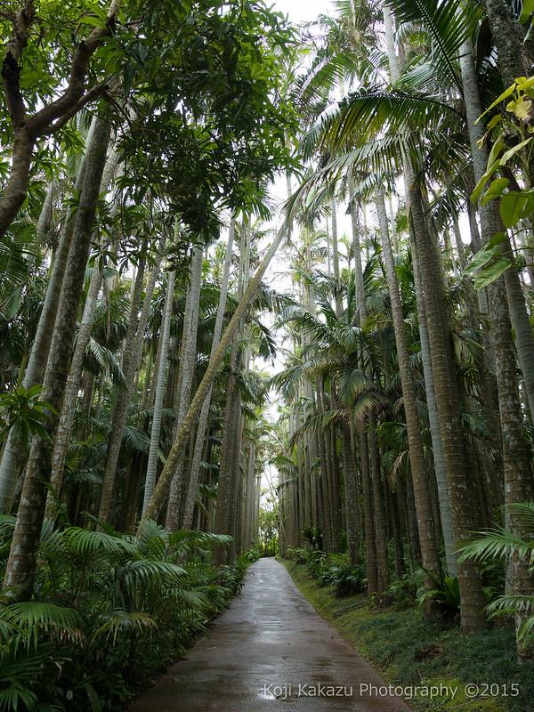 東南植物楽園-177