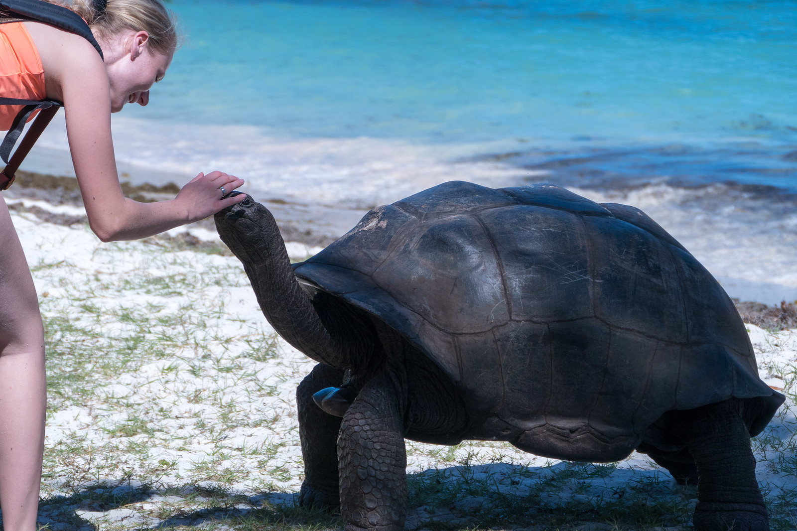 family friendly activities in seychelles - curieuse island