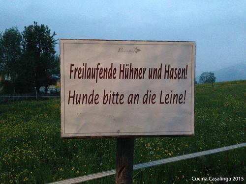 Peternhof Huehner