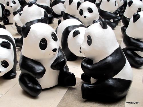 Chatting Panda