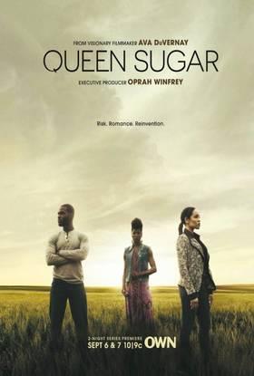 Cukranendrių ūkis (1 sezonas) / Queen Sugar (Season 1) (2016)