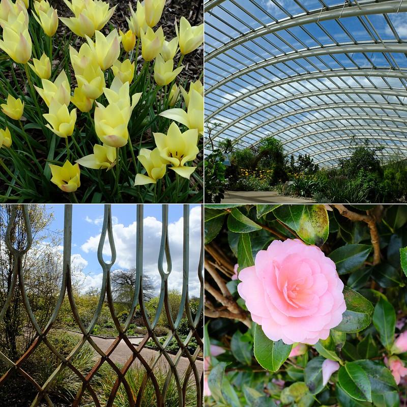 botanic garden wales montage S