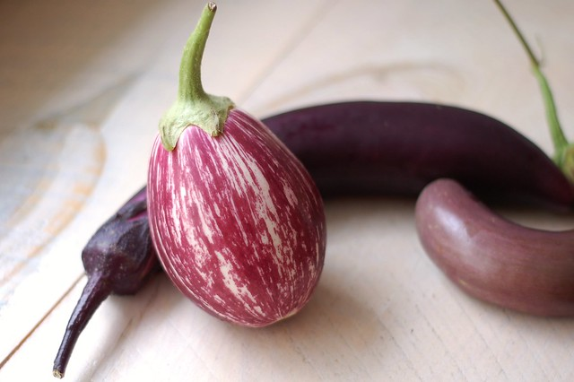 Eggplants from the garden by Eve Fox, the Garden of Eating, copyright 2016
