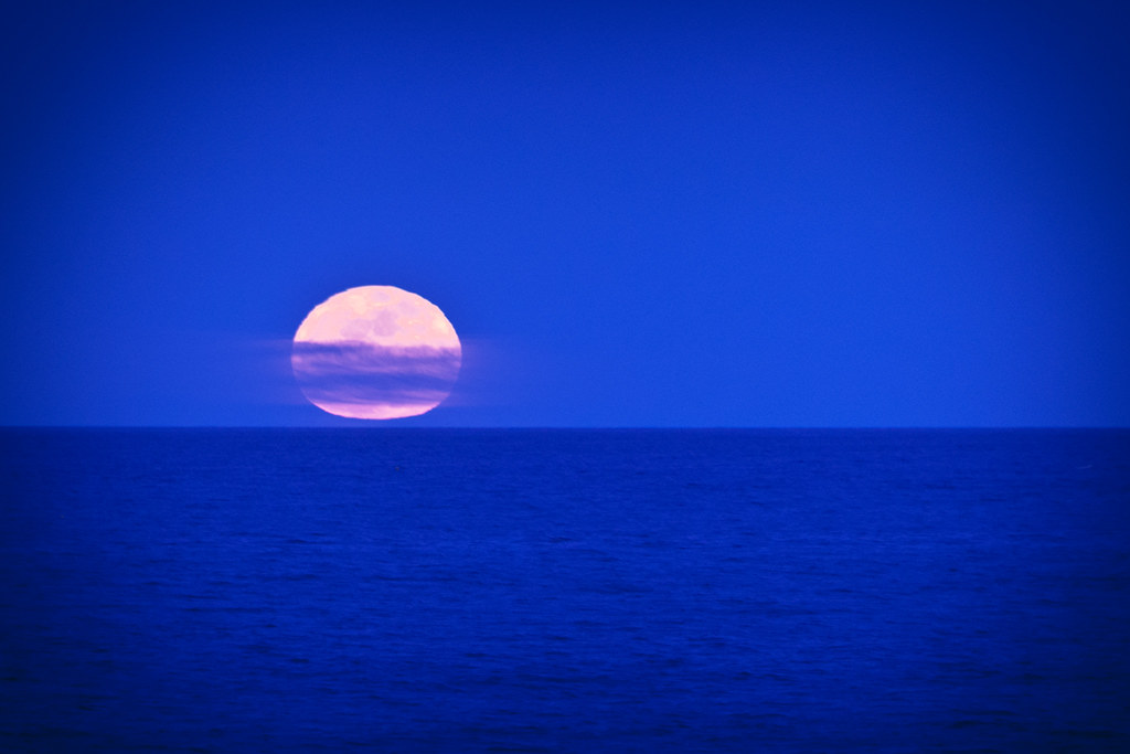Pink Moon Rising | Kate Hannon | Flickr
