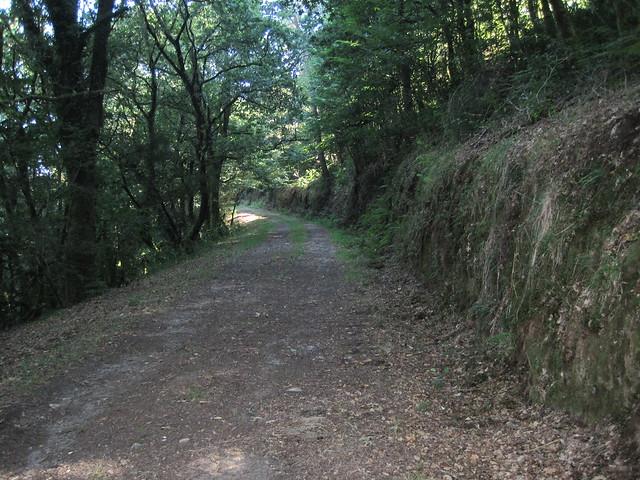 Sendero en la Ruta do Río Dubra y Devesa de Gontar