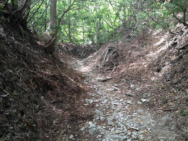鎌ヶ岳 武平峠 登山道