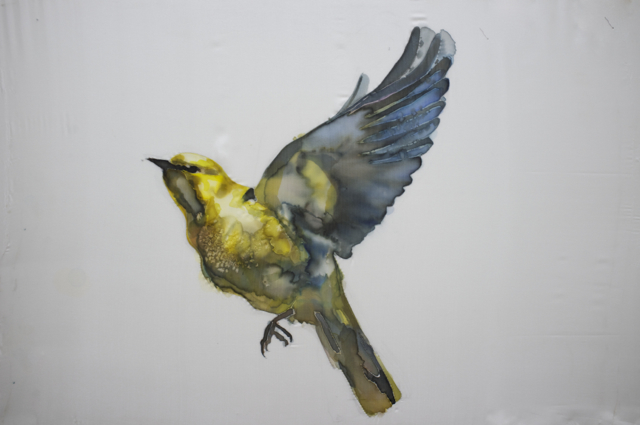 GH Birds 3