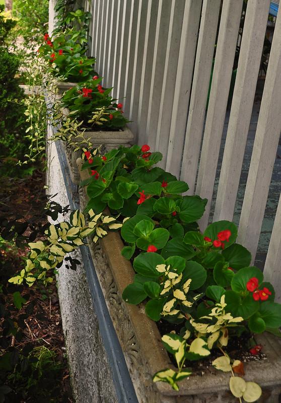 Porch Planters (2)