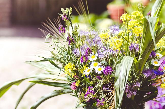 OBI Frühlingsgrüße, Garten