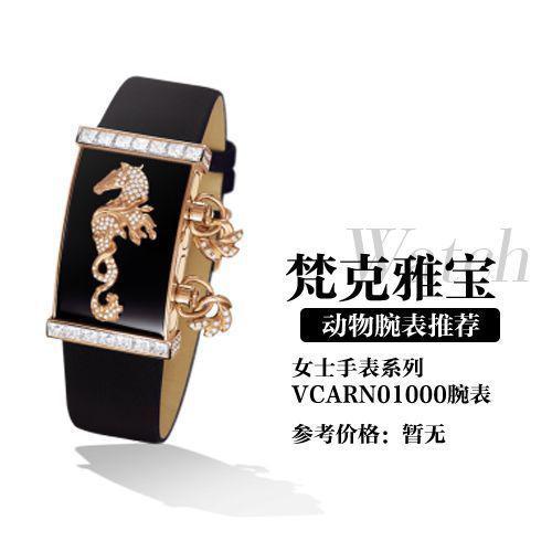 Van Cleef Albemarle secret series vcarn01000 wrist watch
