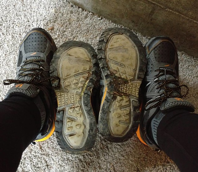 New shoes/old shoes. The old ones lasted 357 miles, which I walked since July 19.
