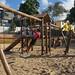 Children play near the Community Center of Pirajá