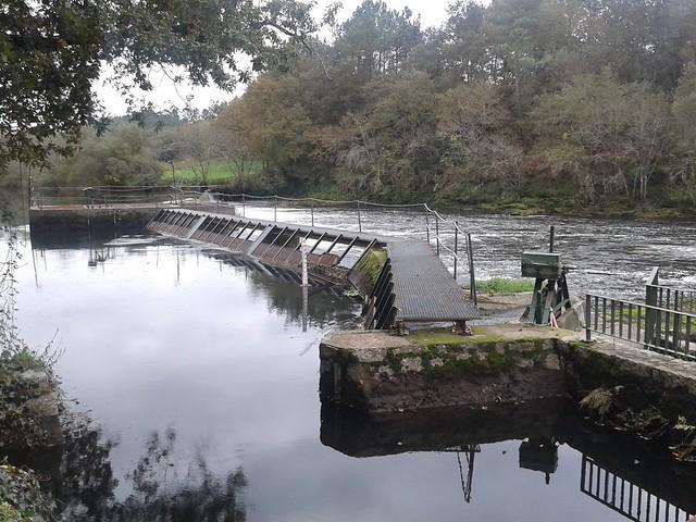 Coto de Pesca de Ximonde en Vedra