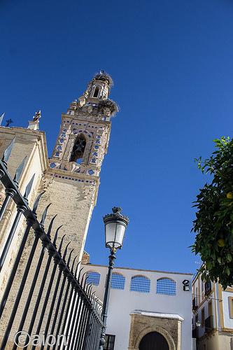 AionSur: Noticias de Sevilla, sus Comarcas y Andalucía 30101004123_2d2532ce32_o_d Ciclo de conferencias para conmemorar el V Centenario de la Fundación Hospital Santo Cristo Agenda Cultura V Centenario de la Fundación Hospital Santo Cristo