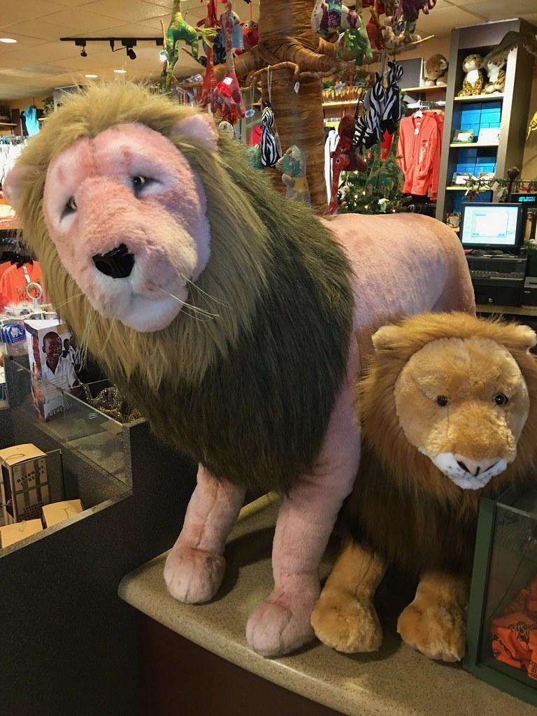 Lincoln Park Zoo Plush Lion At Gift Shop Reto Kurmann