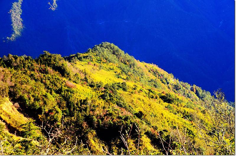鎮子堡山山頂俯瞰山景